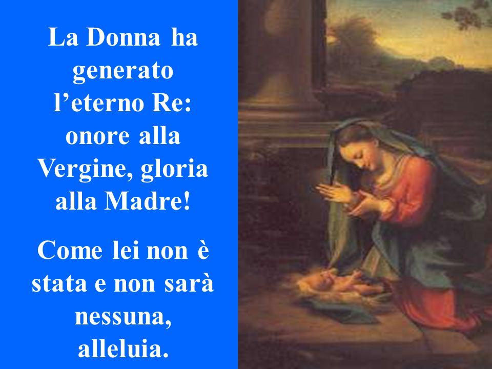 La Donna ha generato l'eterno Re: onore alla Vergine, gloria alla Madre.