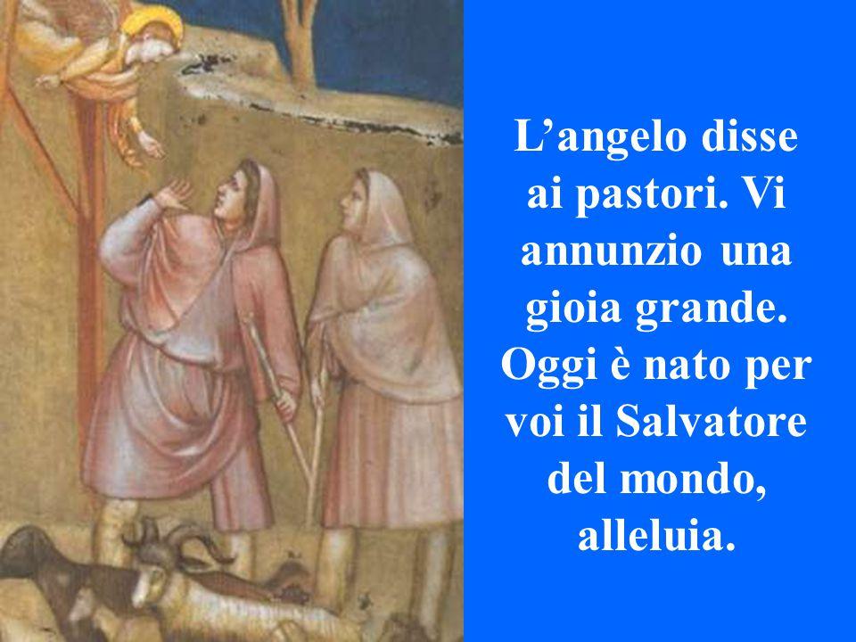 La Donna ha generato l'eterno Re: onore alla Vergine, gloria alla Madre! Come lei non è stata e non sarà nessuna, alleluia.