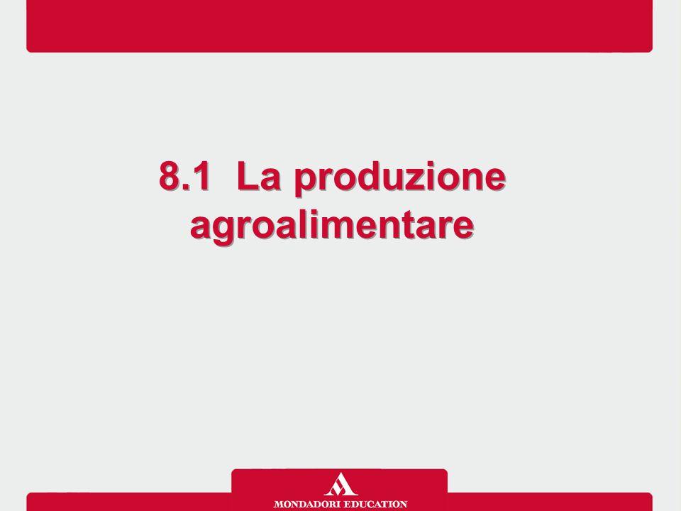 8.1 La produzione agroalimentare