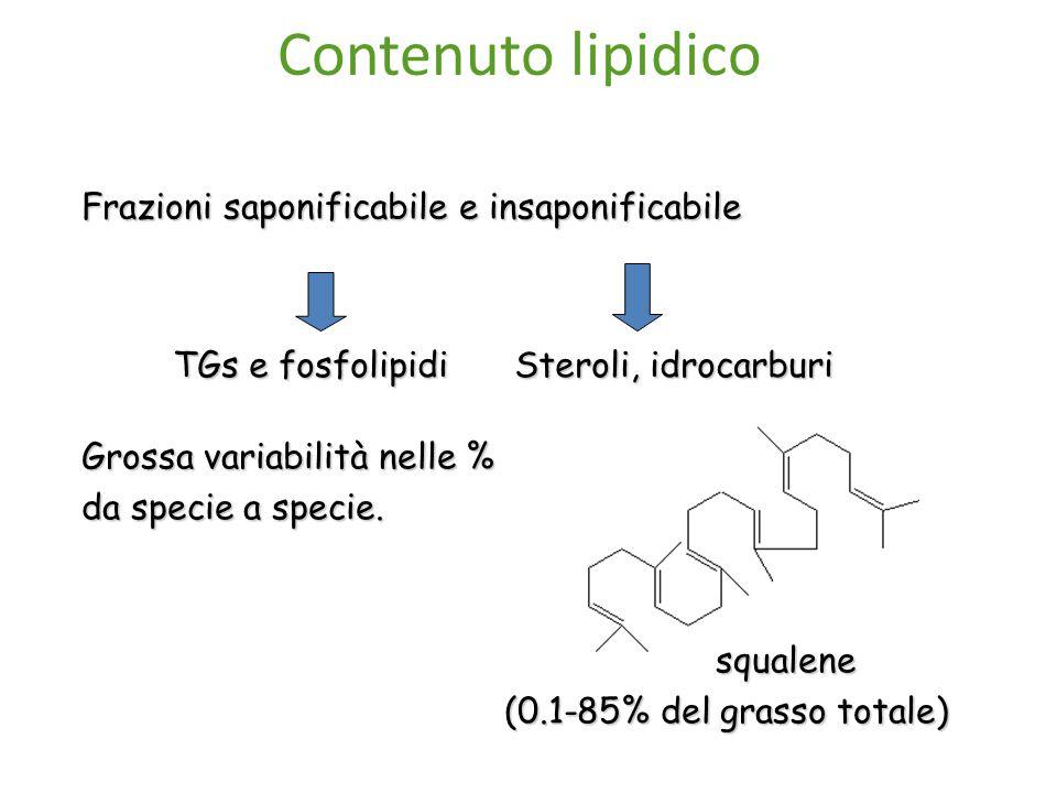 Frazioni saponificabile e insaponificabile TGs e fosfolipidi Steroli, idrocarburi Grossa variabilità nelle % da specie a specie.