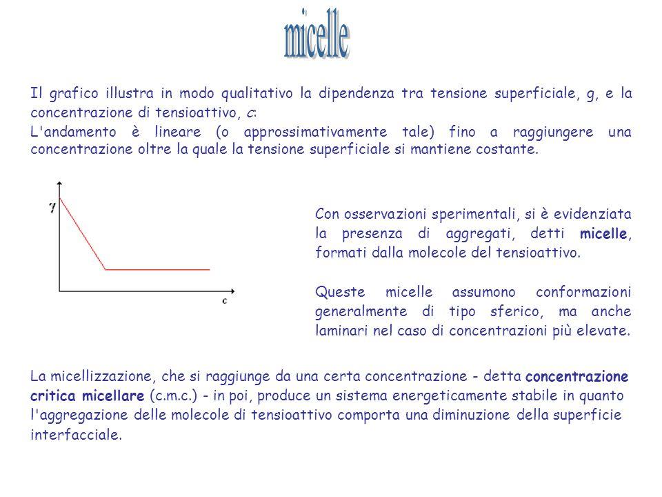 Il grafico illustra in modo qualitativo la dipendenza tra tensione superficiale, g, e la concentrazione di tensioattivo, c: L'andamento è lineare (o a