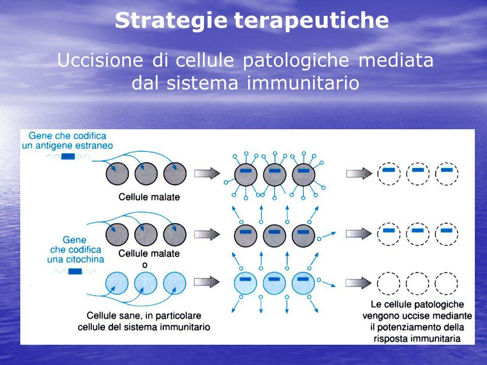Uccisione di cellule patologiche mediata dal sistema immunitario Strategie terapeutiche