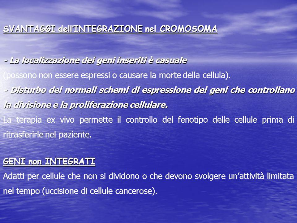 SVANTAGGI dell'INTEGRAZIONE nel CROMOSOMA - La localizzazione dei geni inseriti è casuale (possono non essere espressi o causare la morte della cellula).