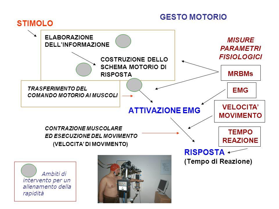 STIMOLO ELABORAZIONE DELL'INFORMAZIONE COSTRUZIONE DELLO SCHEMA MOTORIO DI RISPOSTA TRASFERIMENTO DEL COMANDO MOTORIO AI MUSCOLI ATTIVAZIONE EMG CONTR