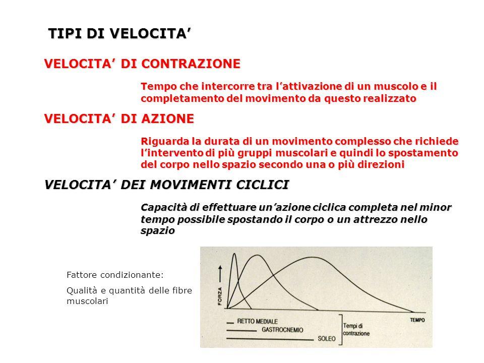 TIPI DI VELOCITA' VELOCITA' DI CONTRAZIONE Tempo che intercorre tra l'attivazione di un muscolo e il completamento del movimento da questo realizzato