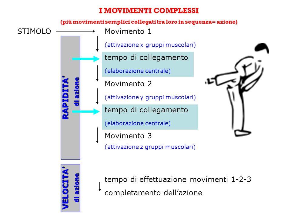 I MOVIMENTI COMPLESSI (più movimenti semplici collegati tra loro in sequenza= azione) STIMOLOMovimento 1 (attivazione x gruppi muscolari) tempo di col