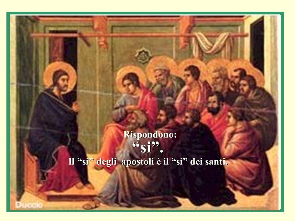 Rispondono: si . Il si degli apostoli è il si dei santi.