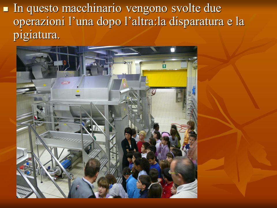 In questo macchinario vengono svolte due operazioni l'una dopo l'altra:la disparatura e la pigiatura. In questo macchinario vengono svolte due operazi