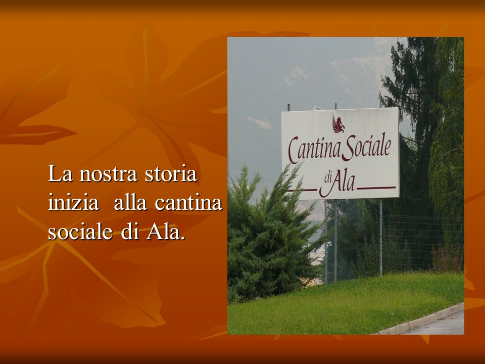 La nostra storia inizia alla cantina sociale di Ala. La nostra storia inizia alla cantina sociale di Ala.