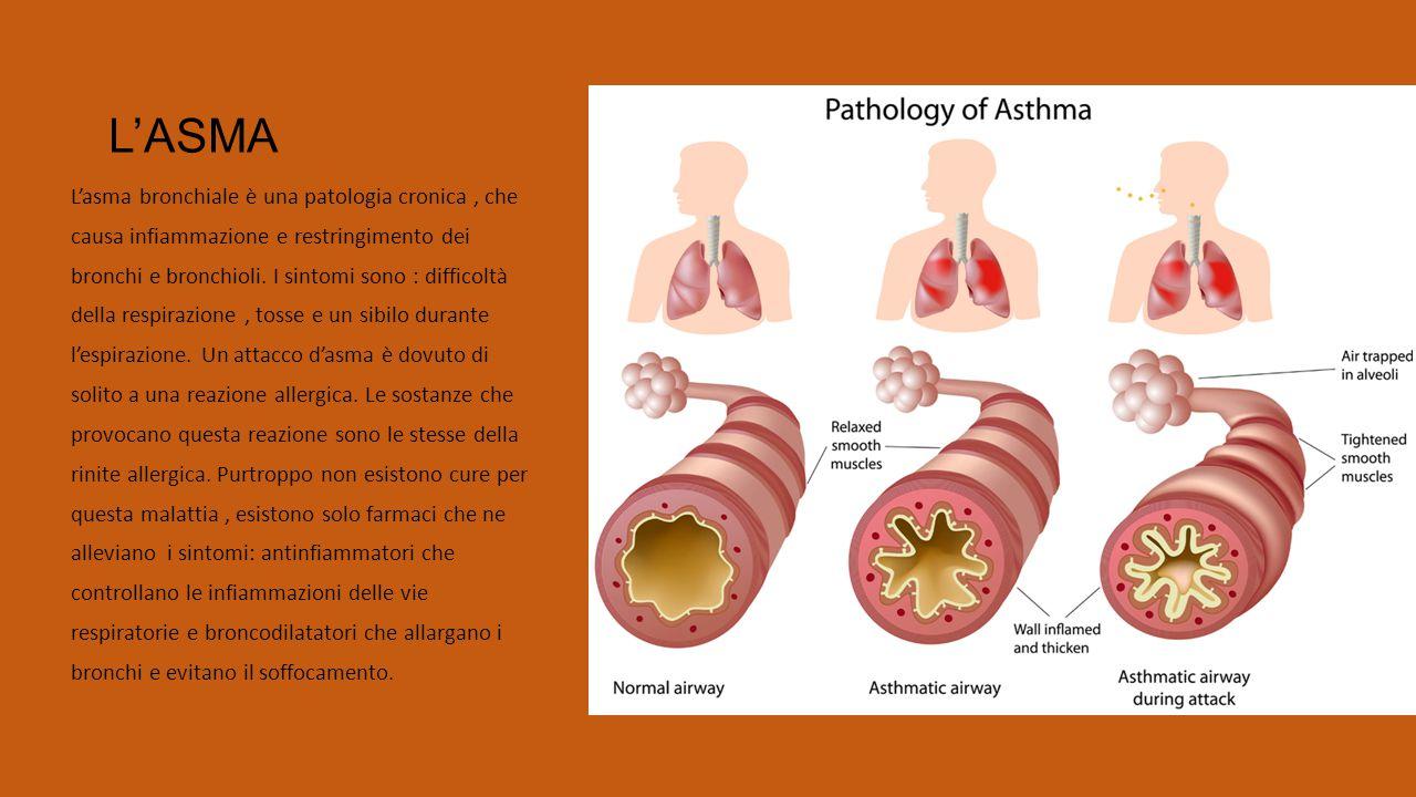 L'ASMA L'asma bronchiale è una patologia cronica, che causa infiammazione e restringimento dei bronchi e bronchioli. I sintomi sono : difficoltà della