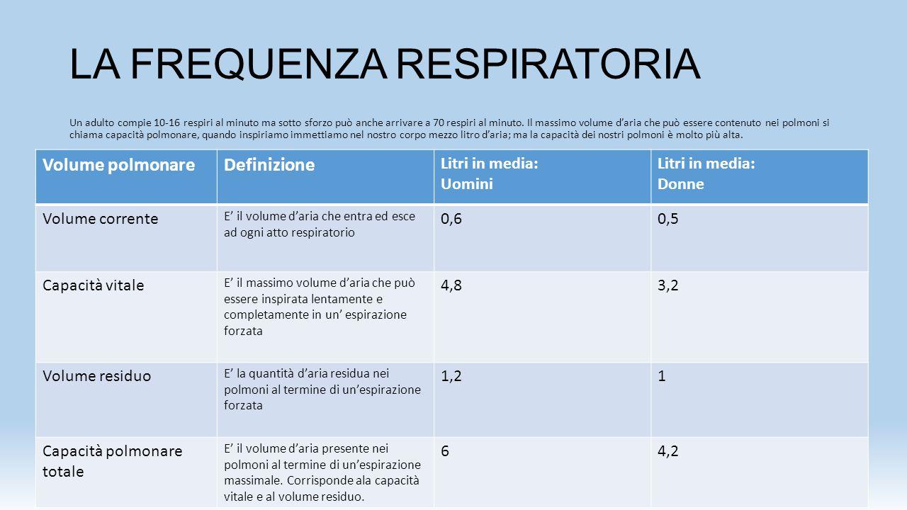 LA FREQUENZA RESPIRATORIA Un adulto compie 10-16 respiri al minuto ma sotto sforzo può anche arrivare a 70 respiri al minuto. Il massimo volume d'aria