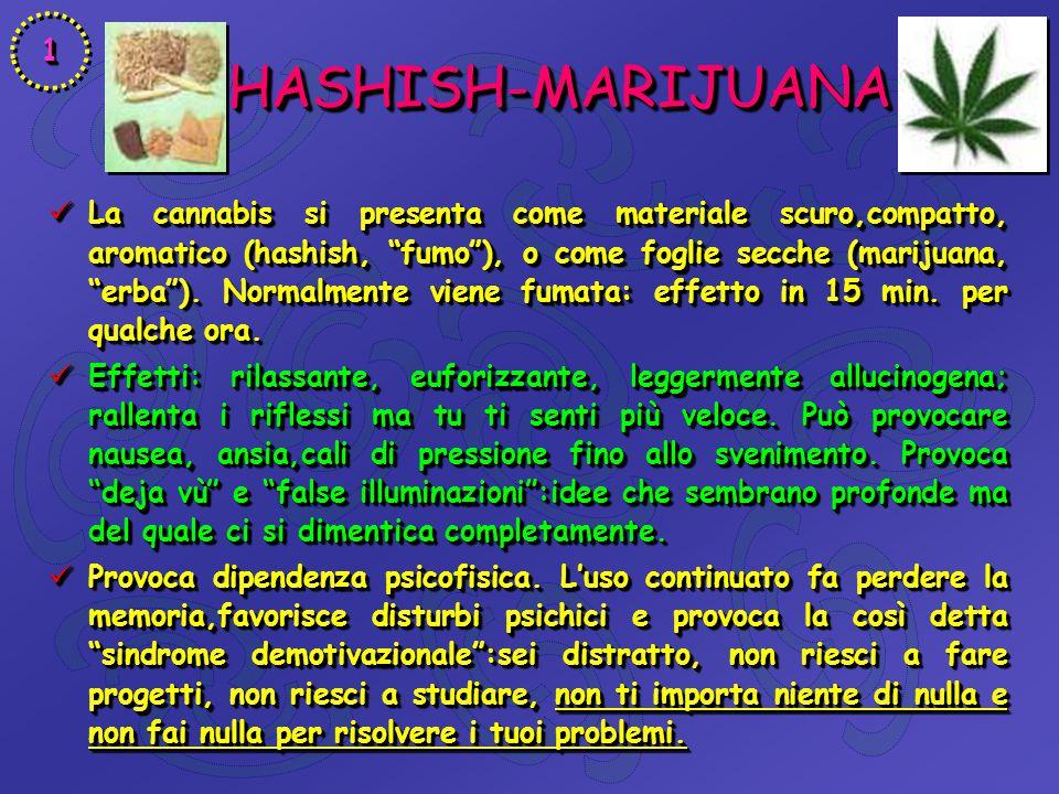 "HASHISH-MARIJUANA HASHISH-MARIJUANA La cannabis si presenta come materiale scuro,compatto, aromatico (hashish, ""fumo""), o come foglie secche (marijuan"