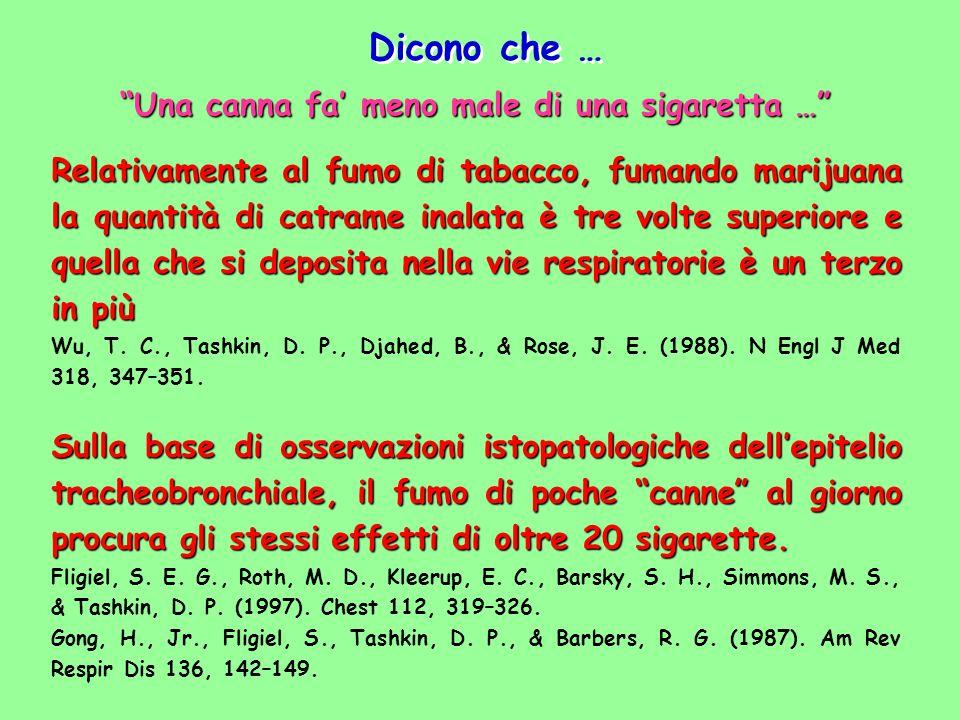 Relativamente al fumo di tabacco, fumando marijuana la quantità di catrame inalata è tre volte superiore e quella che si deposita nella vie respirator