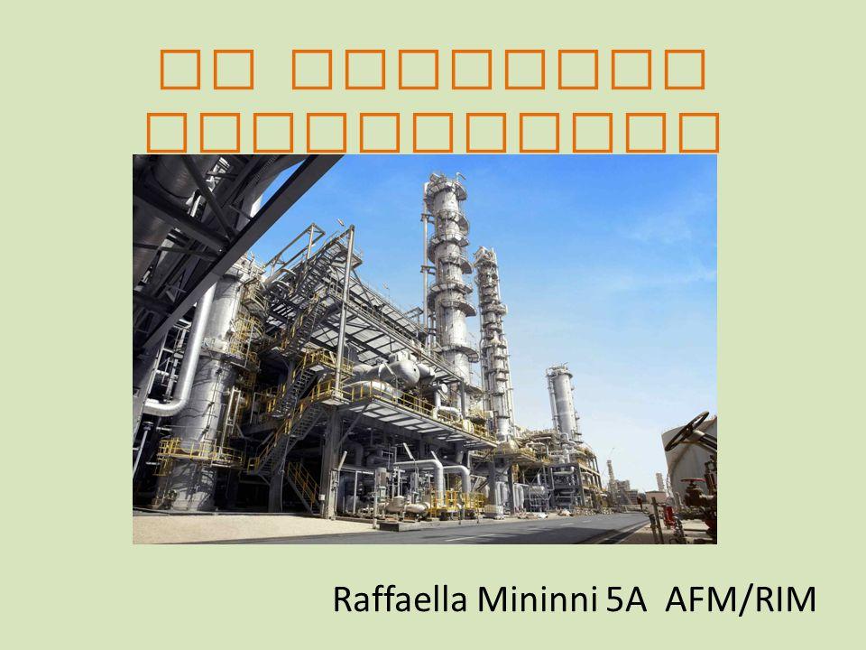 LA POLITICA INDUSTRIALE Raffaella Mininni 5A AFM/RIM
