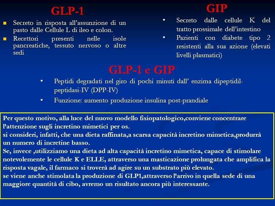 GLP-1 Secreto in risposta all'assunzione di un pasto dalle Cellule L di ileo e colon. Secreto in risposta all'assunzione di un pasto dalle Cellule L d