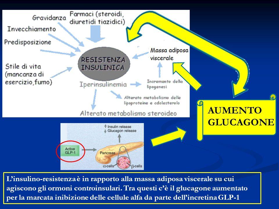 AUMENTO GLUCAGONE L'insulino-resistenza è in rapporto alla massa adiposa viscerale su cui agiscono gli ormoni controinsulari. Tra questi c'è il glucag