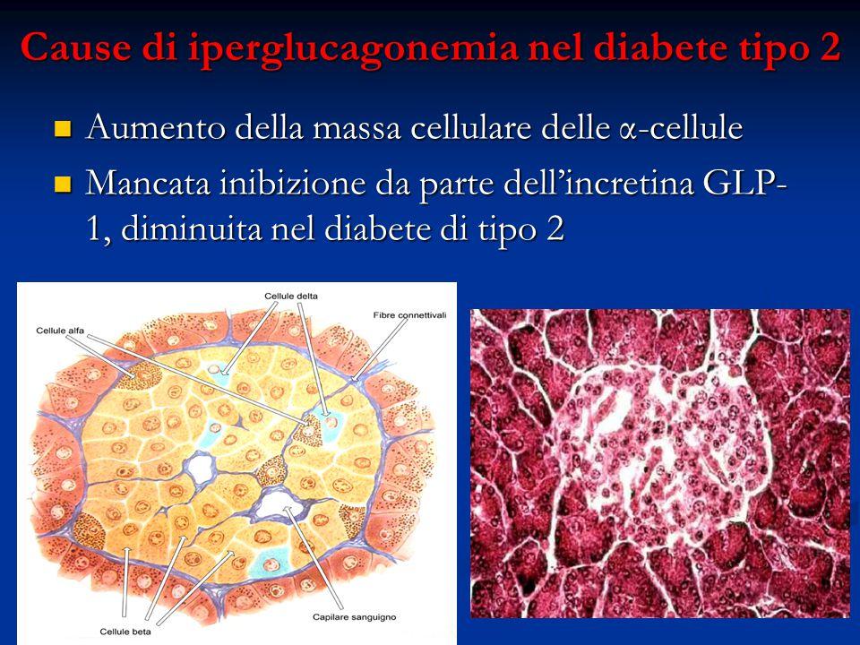 Cause di iperglucagonemia nel diabete tipo 2 Aumento della massa cellulare delle α-cellule Aumento della massa cellulare delle α-cellule Mancata inibi