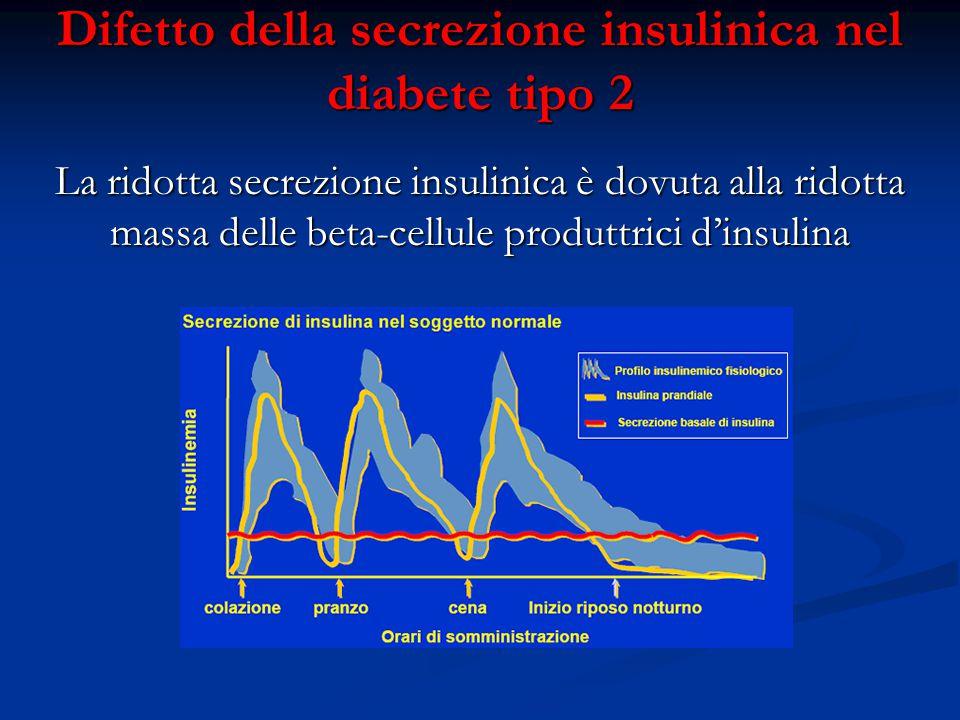 Difetto della secrezione insulinica nel diabete tipo 2 La ridotta secrezione insulinica è dovuta alla ridotta massa delle beta-cellule produttrici d'i