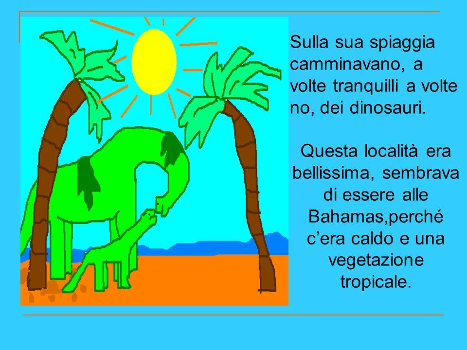 Sulla sua spiaggia camminavano, a volte tranquilli a volte no, dei dinosauri. Questa località era bellissima, sembrava di essere alle Bahamas,perché c