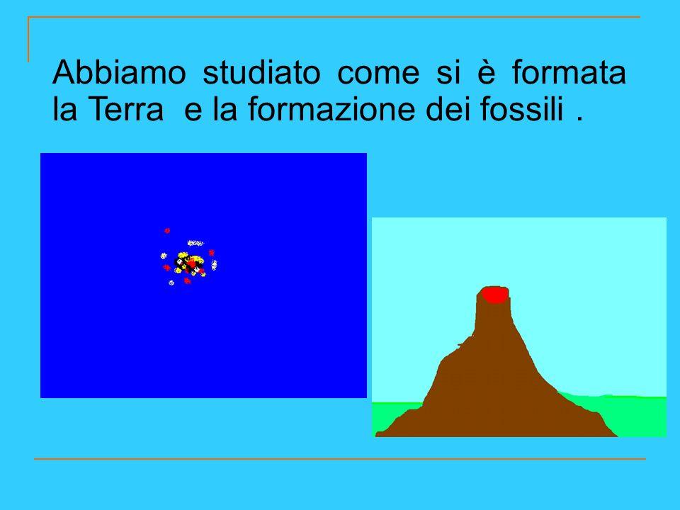 Abbiamo studiato come si è formata la Terra e la formazione dei fossili.