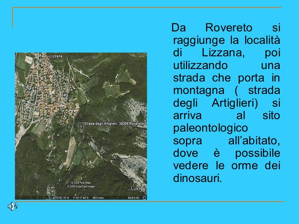 Da Rovereto si raggiunge la località di Lizzana, poi utilizzando una strada che porta in montagna ( strada degli Artiglieri) si arriva al sito paleont