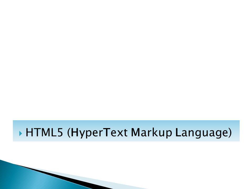  HTML5 (HyperText Markup Language)