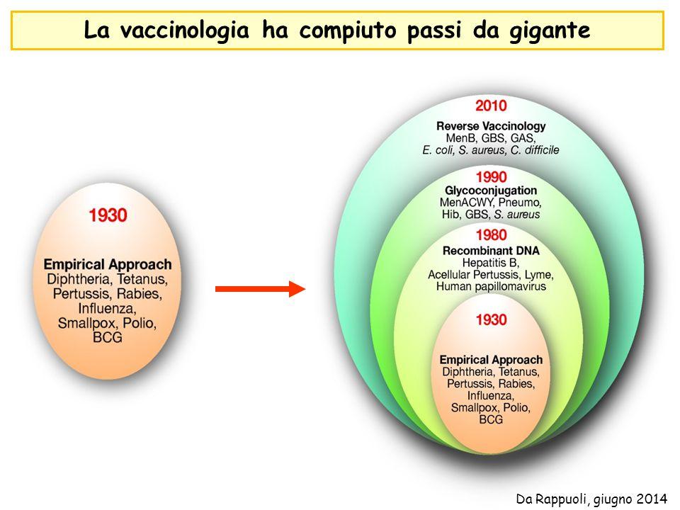 La vaccinologia ha compiuto passi da gigante Da Rappuoli, giugno 2014