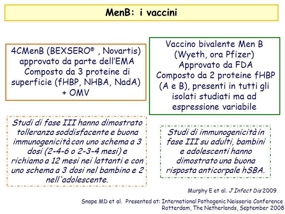 4CMenB (BEXSERO ®, Novartis) approvato da parte dell'EMA Composto da 3 proteine di superficie (fHBP, NHBA, NadA) + OMV Studi di fase III hanno dimostr