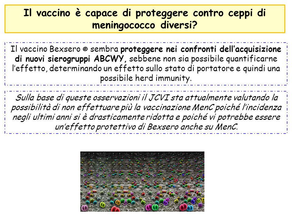 Il vaccino Bexsero ® sembra proteggere nei confronti dell'acquisizione di nuovi sierogruppi ABCWY, sebbene non sia possibile quantificarne l'effetto,