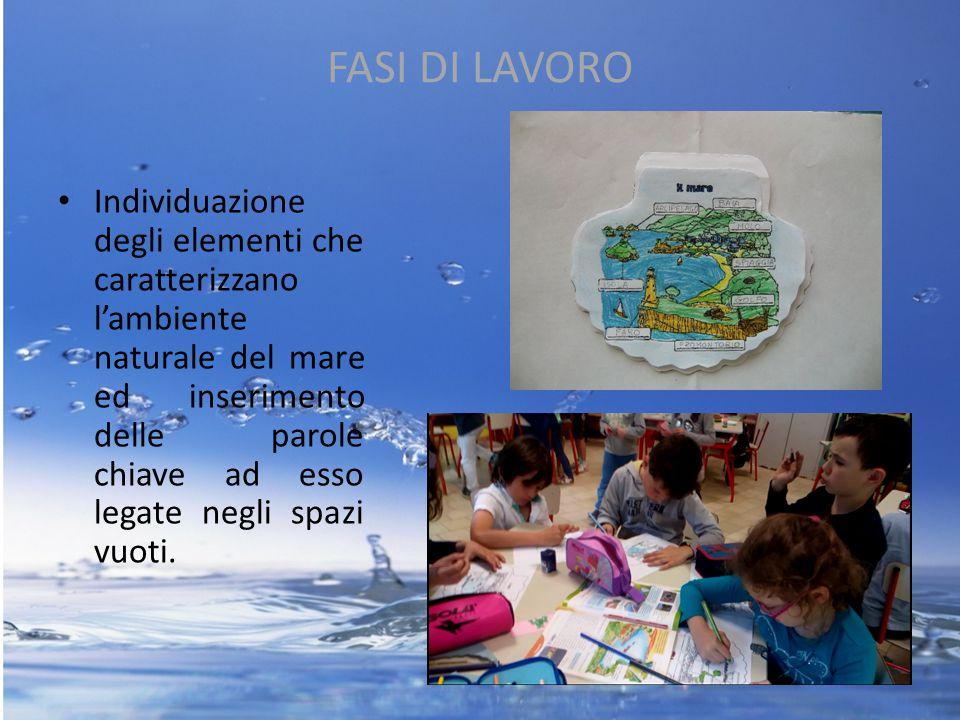 FASI DI LAVORO Individuazione degli elementi che caratterizzano l'ambiente naturale del mare ed inserimento delle parole chiave ad esso legate negli s