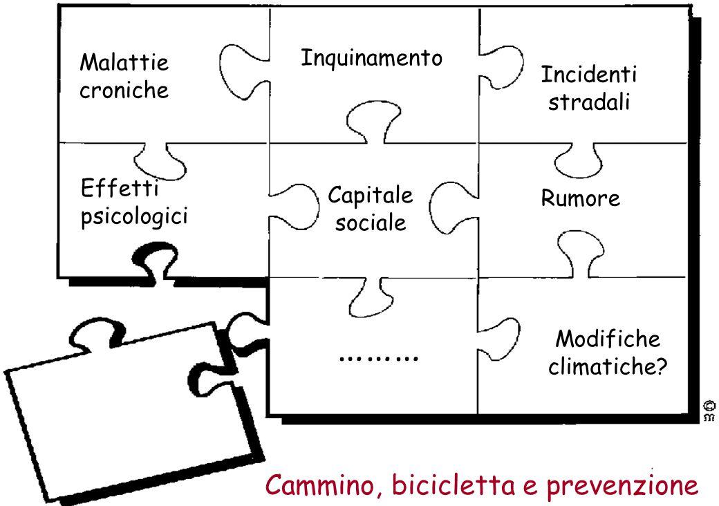 3 Inquinamento Malattie croniche Cammino, bicicletta e prevenzione Incidenti stradali Effetti psicologici Modifiche climatiche.
