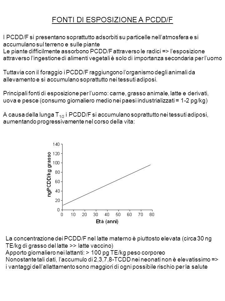 FONTI DI ESPOSIZIONE A PCDD/F I PCDD/F si presentano soprattutto adsorbiti su particelle nell'atmosfera e si accumulano sul terreno e sulle piante Le