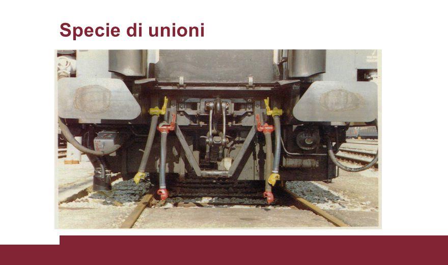 Specie di unioni