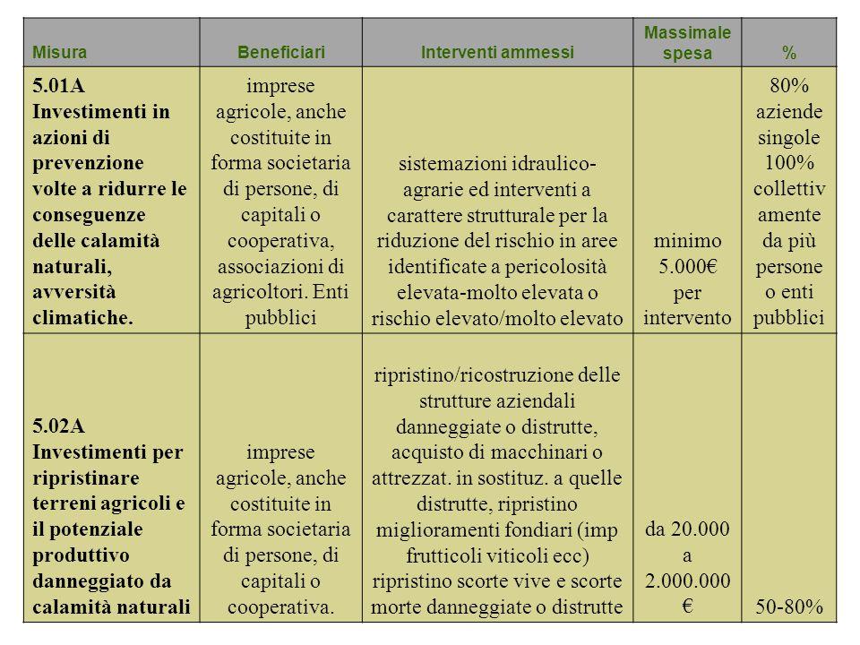 MisuraBeneficiariInterventi ammessi Massimale spesa% 5.01A Investimenti in azioni di prevenzione volte a ridurre le conseguenze delle calamità natural