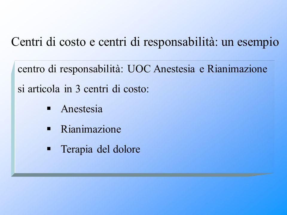 Centri di costo e centri di responsabilità: un esempio centro di responsabilità: UOC Anestesia e Rianimazione si articola in 3 centri di costo:  Anes