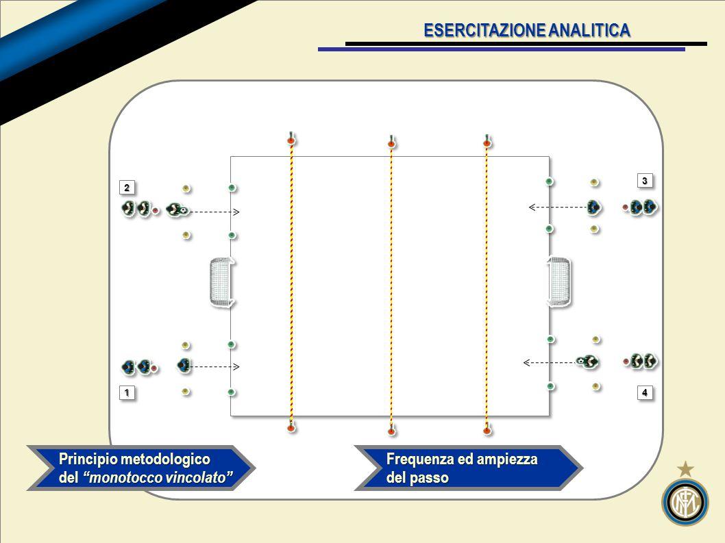 v ESERCITAZIONE ANALITICA Principio metodologico del monotocco vincolato 22 11 33 44 Frequenza ed ampiezza del passo
