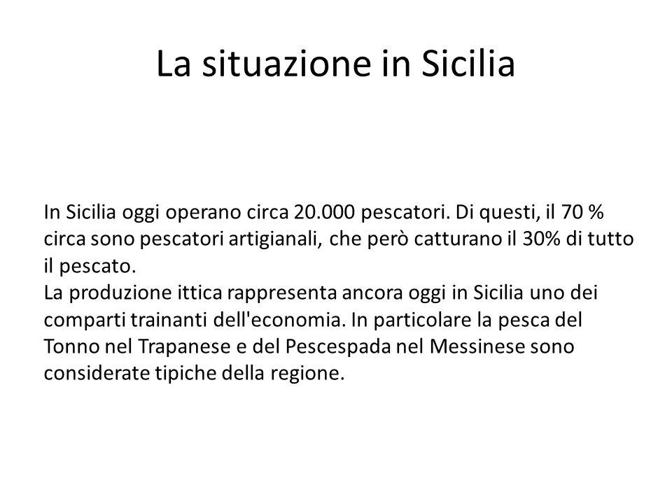 La situazione in Sicilia In Sicilia oggi operano circa 20.000 pescatori. Di questi, il 70 % circa sono pescatori artigianali, che però catturano il 30