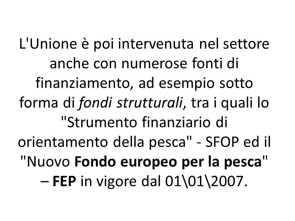 L Unione è poi intervenuta nel settore anche con numerose fonti di finanziamento, ad esempio sotto forma di fondi strutturali, tra i quali lo Strumento finanziario di orientamento della pesca - SFOP ed il Nuovo Fondo europeo per la pesca – FEP in vigore dal 01\01\2007.