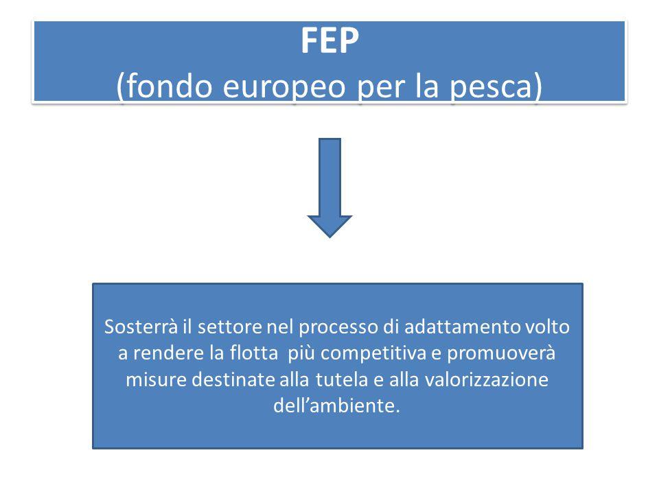 FEP (fondo europeo per la pesca) Sosterrà il settore nel processo di adattamento volto a rendere la flotta più competitiva e promuoverà misure destinate alla tutela e alla valorizzazione dell'ambiente.