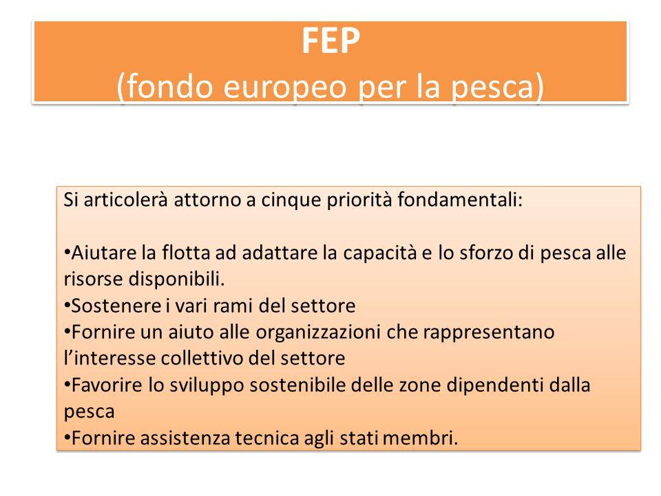 FEP (fondo europeo per la pesca) Si articolerà attorno a cinque priorità fondamentali: Aiutare la flotta ad adattare la capacità e lo sforzo di pesca alle risorse disponibili.