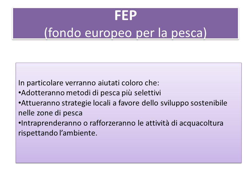 FEP (fondo europeo per la pesca) In particolare verranno aiutati coloro che: Adotteranno metodi di pesca più selettivi Attueranno strategie locali a favore dello sviluppo sostenibile nelle zone di pesca Intraprenderanno o rafforzeranno le attività di acquacoltura rispettando l'ambiente.