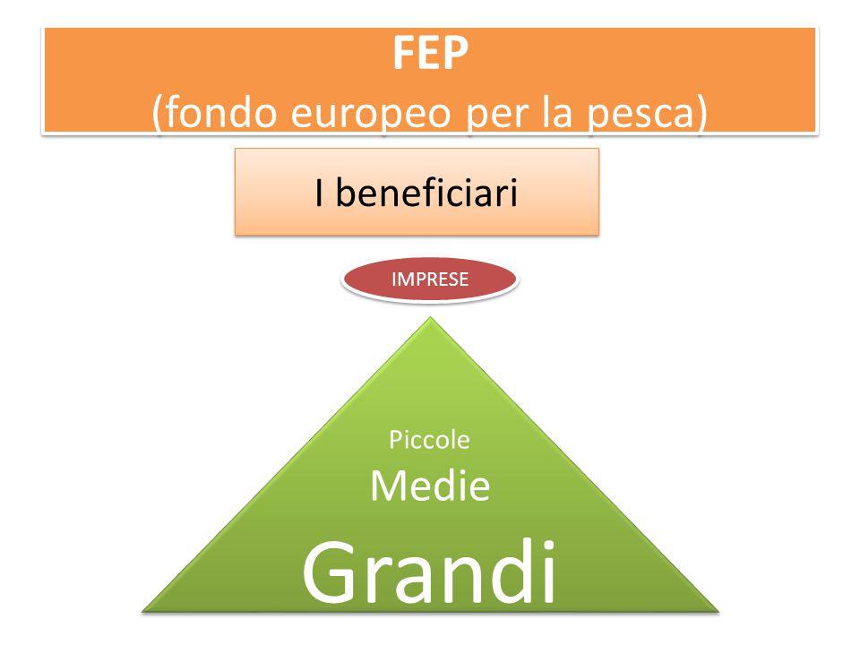 FEP (fondo europeo per la pesca) I beneficiari Piccole Medie Grandi Piccole Medie Grandi IMPRESE