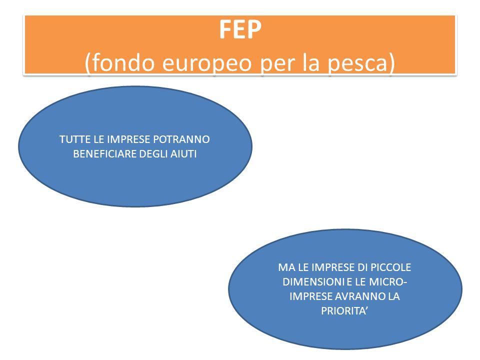 FEP (fondo europeo per la pesca) TUTTE LE IMPRESE POTRANNO BENEFICIARE DEGLI AIUTI MA LE IMPRESE DI PICCOLE DIMENSIONI E LE MICRO- IMPRESE AVRANNO LA PRIORITA'