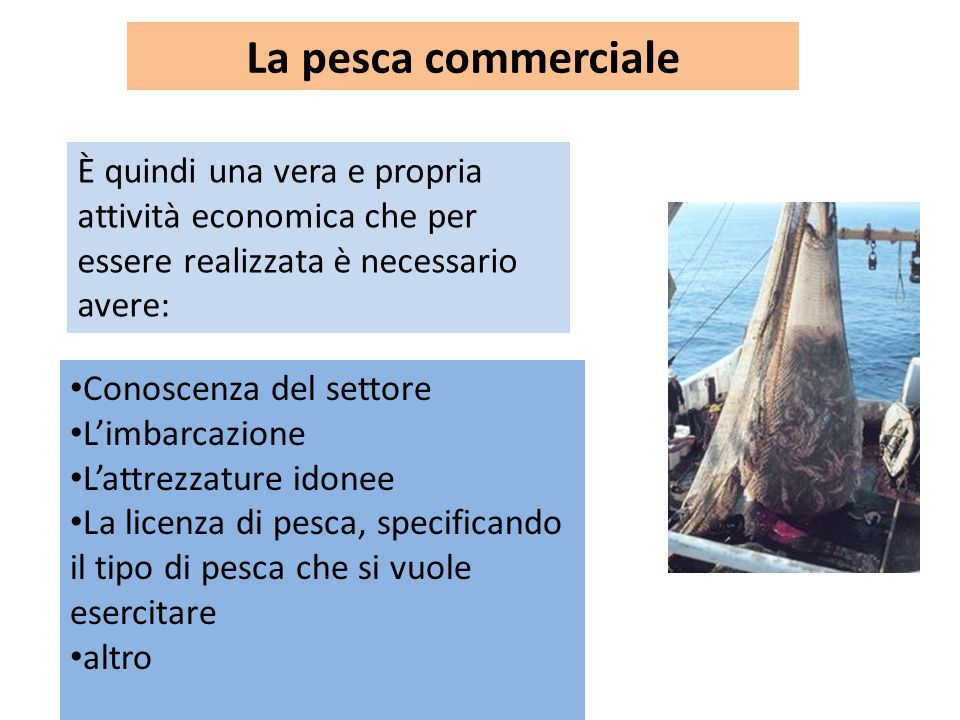 È quindi una vera e propria attività economica che per essere realizzata è necessario avere: Conoscenza del settore L'imbarcazione L'attrezzature idonee La licenza di pesca, specificando il tipo di pesca che si vuole esercitare altro