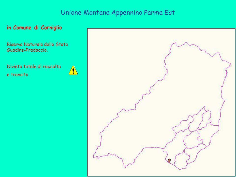 Unione Montana Appennino Parma Est in Comune di Corniglio Riserva Naturale dello Stato Guadine-Pradaccio. Divieto totale di raccolta e transito