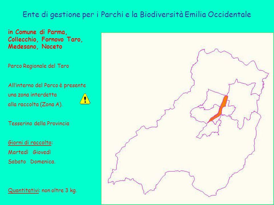Ente di gestione per i Parchi e la Biodiversità Emilia Occidentale in Comune di Parma, Collecchio, Fornovo Taro, Medesano, Noceto Parco Regionale del Taro All'interno del Parco è presente una zona interdetta alla raccolta (Zona A).