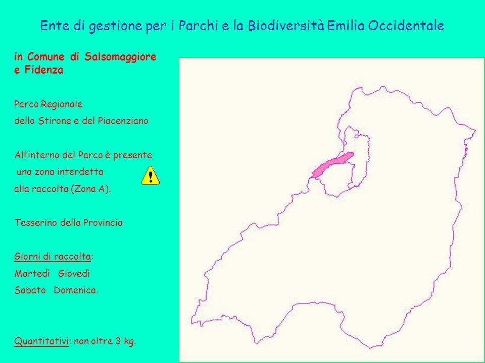 Ente di gestione per i Parchi e la Biodiversità Emilia Occidentale in Comune di Salsomaggiore e Fidenza Parco Regionale dello Stirone e del Piacenziano All'interno del Parco è presente una zona interdetta alla raccolta (Zona A).