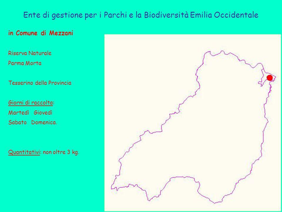 Ente di gestione per i Parchi e la Biodiversità Emilia Occidentale in Comune di Mezzani Riserva Naturale Parma Morta Tesserino della Provincia Giorni di raccolta: Martedì Giovedì Sabato Domenica.