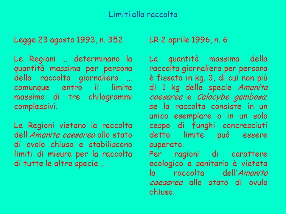 Limiti alla raccolta Legge 23 agosto 1993, n. 352 Le Regioni … determinano la quantità massima per persona della raccolta giornaliera … comunque entro