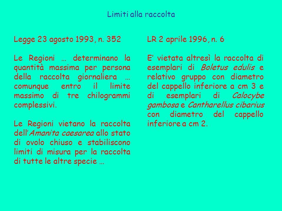 Limiti alla raccolta Legge 23 agosto 1993, n.